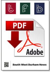 pdf document logo