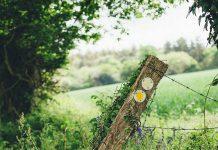 Jess Wilson Blogs